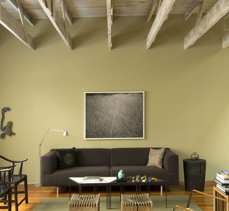 رنگ سبز به دلیل آرامشی که دارد انتخاب خوبی برای فضای نشیمن و اتاق خواب ها خواهد بود