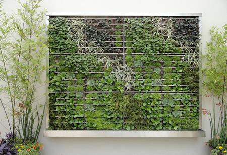 آوردن مقداری از رنگ سبز جنگل در فضای خانه بسیار دلنشین خواهد بود